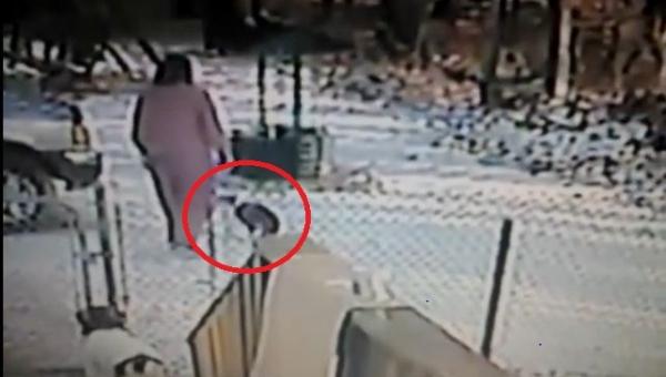 Kobieta chce odgonić kota, nie spodziewała się co stanie się za chwilę