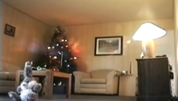 Postawili kamerę w salonie. W ciągu minuty nagrali coś przerażającego