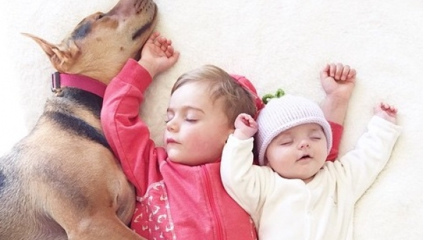 Pies położył się obok śpiących dzieci, wtedy mama zrobiła te niesamowite zdjęcia