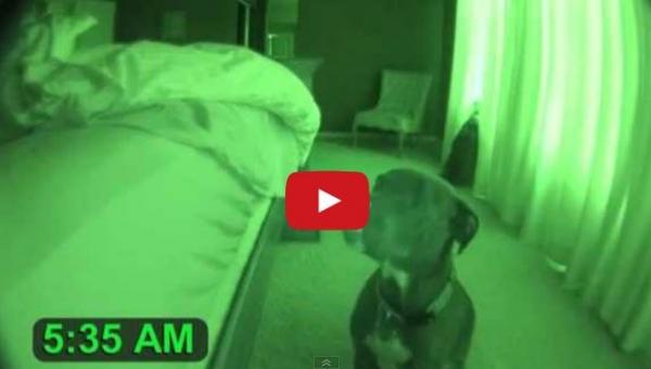 Ustawił kamerę w nocy w sypialni. To co nagrał jest niezwykłe