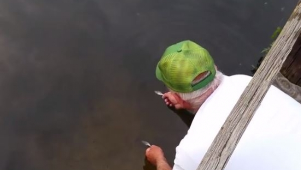 Starszy pan zanurzył rękę w wodzie, to co stąło się potem jest niesamowite!