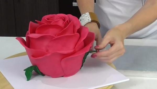 Wygląda jak piękna róża, gdy zobaczyłam co jest w środku? SZOK!