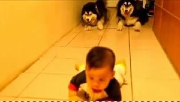 Dziecko uczy się raczkować, ale tylko spójrzcie, co robią widoczne w tle dwa...