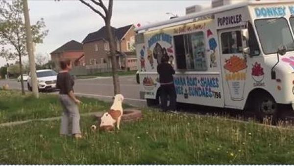 Pies grzecznie ustawił się w kolejce, a potem zrobił TO!