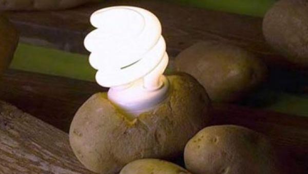 Zobacz jak oświetlić pokój za pomocą.... ZIEMNIAKA!