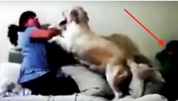 Dziecko chowa się w kącie przed matką, która chce je uderzyć. To, co wtedy...
