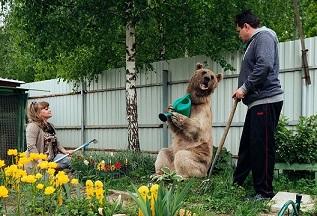 A jego ulubionym zajęciem jest pomaganie w ogródku... <br> Kto z Was miałby...
