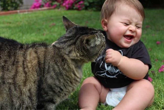 Kot całujący dziecko