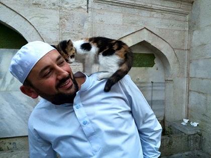 Imam Mustafa Efe zezwolił na wpuszczanie bezpańskich kotów do meczetu  Aziz...