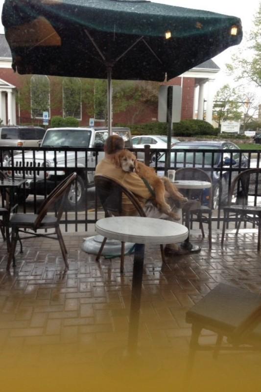 Przy stoliku z parasolem usiadł chroniący się przed deszczem pan. Towarzyszył...