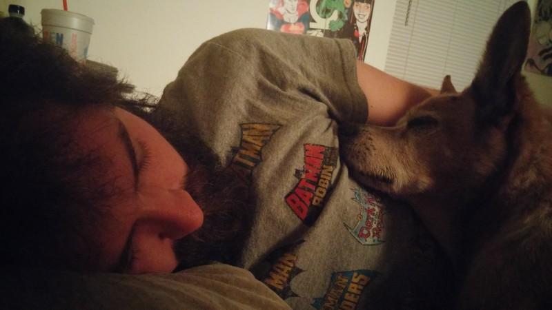 1. Przytulność <br><br> Macie gorszy dzień? Zabierzcie psa do łóżka! Nic tak...