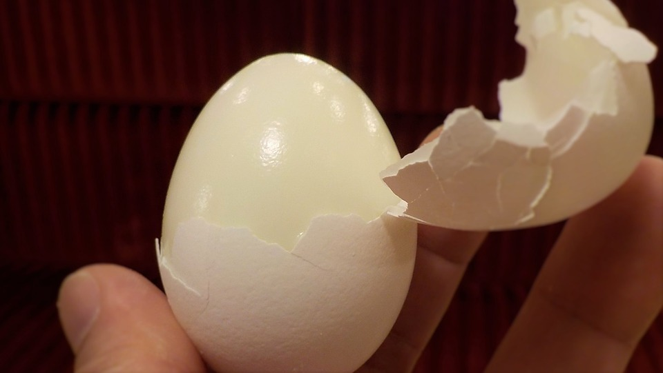 Jajka są bardzo zdrowe, więc nie musimy się obawiać o to, że w czasie diety...