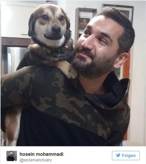 Hosein uratował już wiele psów, ale jego ostatnia akcja jest wyjątkowa......