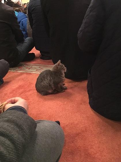 Meczet znajduje się w Stambule.