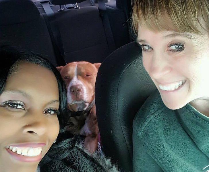 Terri i jej przyjaciółka były zdumione reakcją psa! Na ich widok zaczął...
