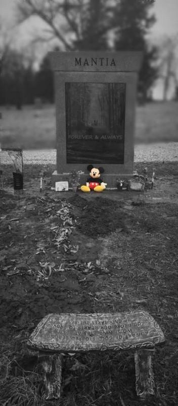 15-miesięczny Parker zginął na miejscu