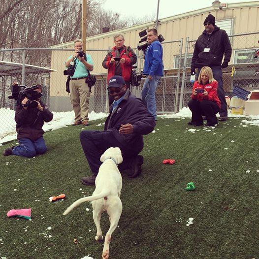 Służby ratunkowe odnalazły psa 8 dni później. Był wygłodzony, lecz wciąż...