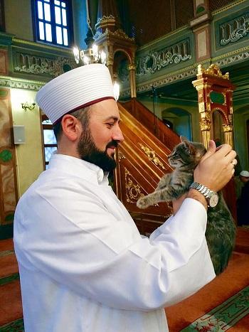 Koty stanowią nie lada atrakcję dla modlących się.