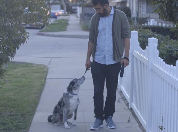 Zobaczcie, dlaczego warto zaprzyjaźnić się z psem, nawet jeśli to będzie trwać t