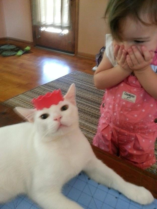 Kot który cierpliwie bawi się w przebieranki z siostrą