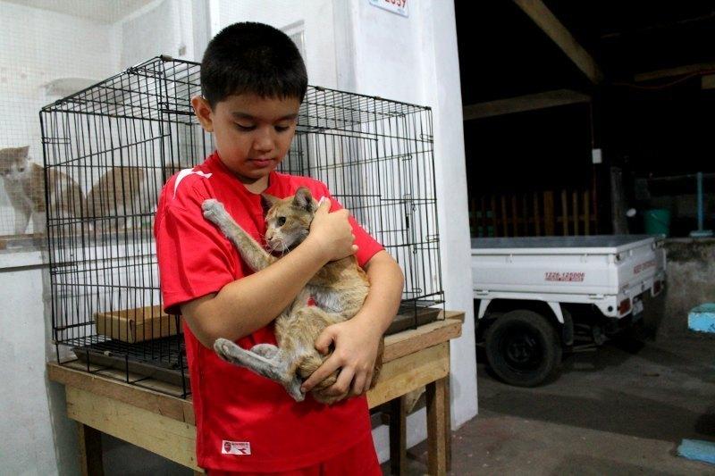 Ken ratuje nie tylko psy, ale  koty, choć przyznaje, że z nimi jest trochę trudn