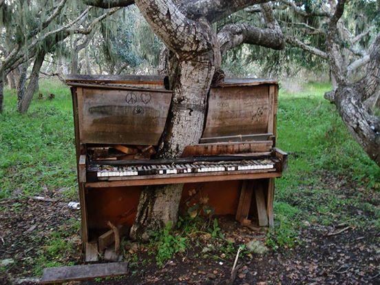 5. Fortepian stojący na polu w Kalifornii, USA.