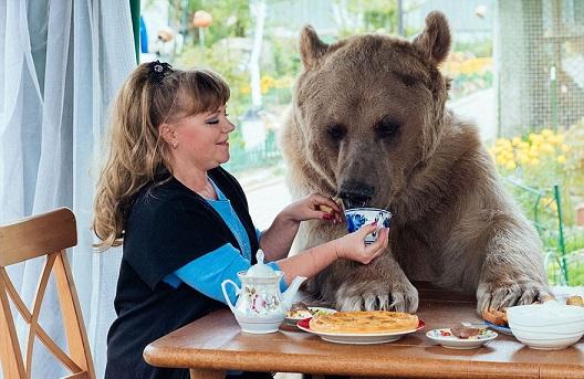 W sumie wygląda na to, że niedźwiedź potrafi zachować się przy stole...