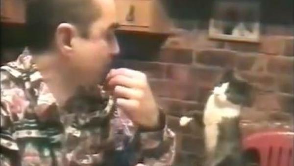 Mężczyzna jest głuchy, a to w jaki sposób jego kot się z nim komunikuje...