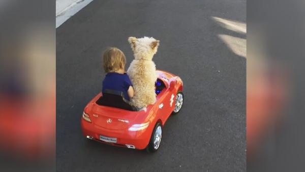 Zaczęła nagrywać swojego syna w samochodzie, zobacz co stało się chwilę później!