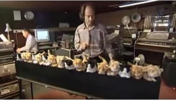 Ten artysta stworzył pierwsze na świecie... kocie organy. Tego nie można...
