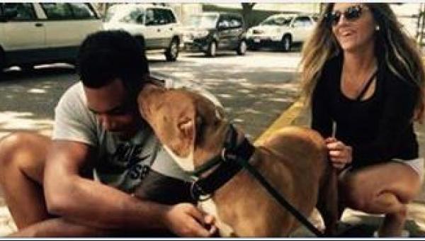 Młody mężczyzna idzie do schroniska i prosi o psa, którego nikt nie chce....