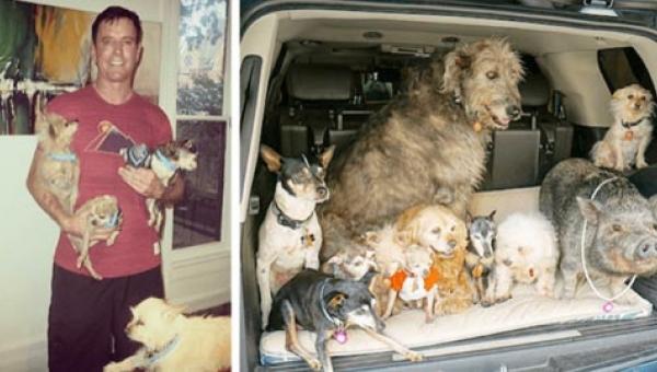 Ten mężczyzna adoptuje stare psy, które nie mają szansy na dom. To jak...