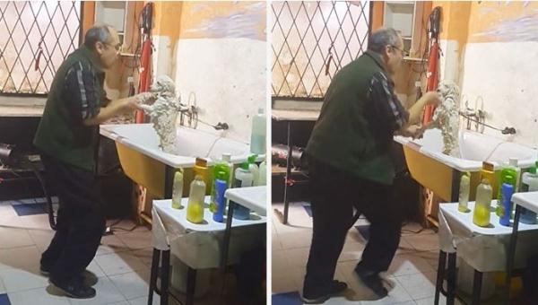 To, w jaki sposób ten fryzjer kąpie psy, to najlepsze, co dzisiaj zobaczycie!