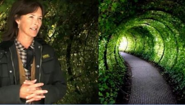 To najbardziej niebezpieczny ogród, do jakiego można wejść!