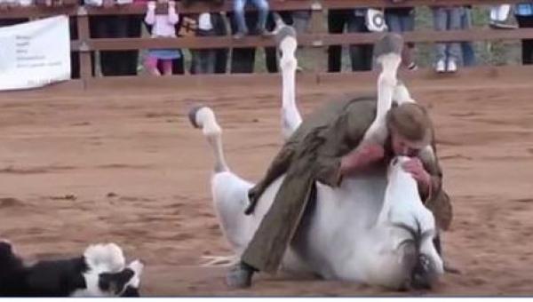 Treser pocałował konia. To, co stało się później, odebrało nam mowę!