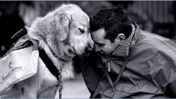 To, co ten pies robi dla swojego człowieka, to najlepsze, co mogło go...