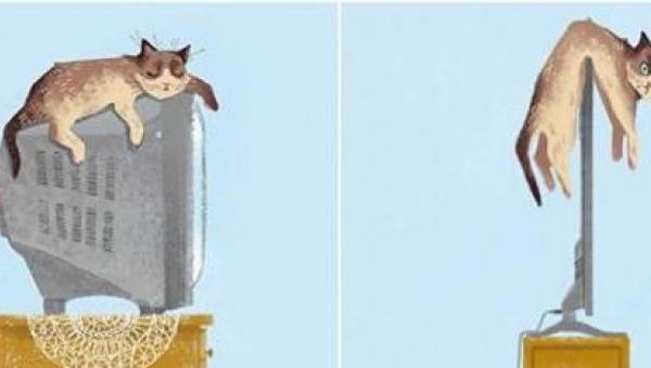 9 przykładów jak technologia zmieniła życie naszych kotów - numer 4 jest...
