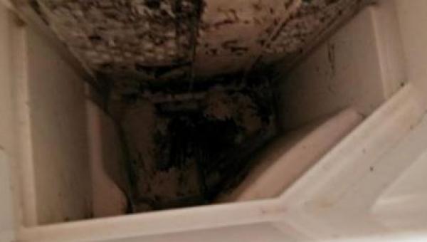 Włączyła pralkę, ale nie włożyła do niej ubrań - powód? Bardzo ważny!