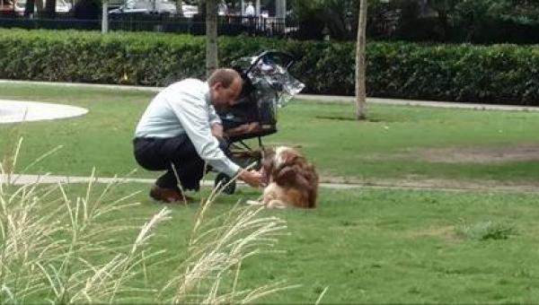 Codziennie biegając przez park widzi mężczyznę, który pcha wózek dla dziecka....