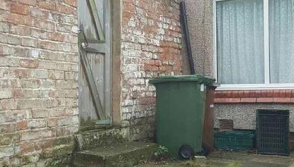 Jeśli jesteś w stanie znaleźć kota chowającego się gdzieś na tym podwórku...
