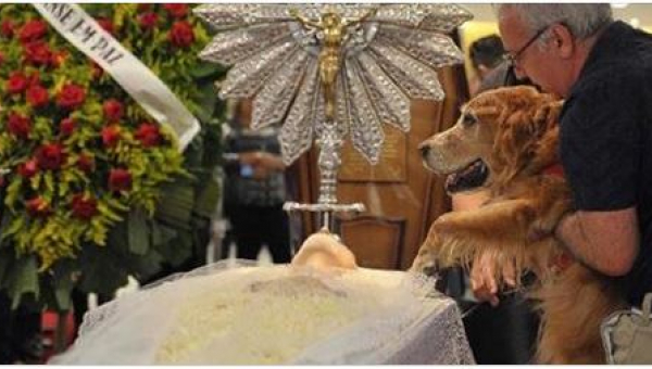 Wzięli psa na ręce i zbliżyli go do trumny. To, co się potem stało,...