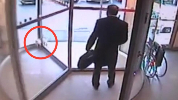 Kot chciał wejść do szpitala, ale obrotowe drzwi prawie go zmiażdżyły, wtedy...