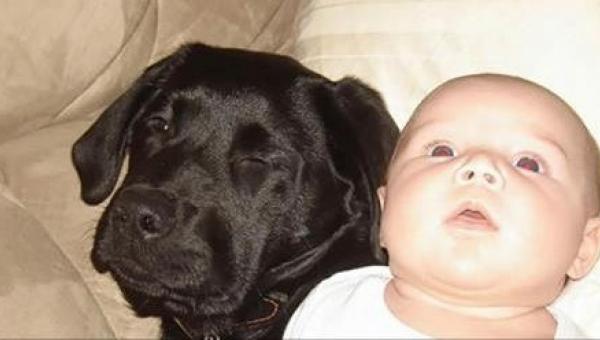 Siostra ostrzegała ją, żeby nie kupowała psa, jeśli będzie mieć dziecko. 10...
