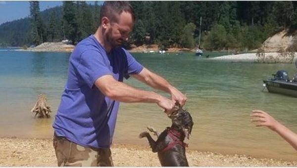 To, co stało się temu psu nad wodą, jest nie do pomyślenia!