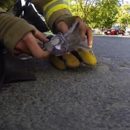Strażak wszedł do płonącego domu, nie spodziewał się co znajdzie. Prawdziwy boha