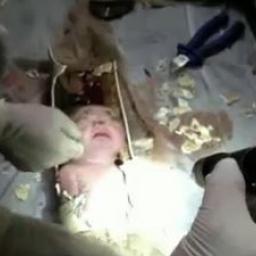 Noworodek został wrzucony do toalety. Co zrobili strażacy? Ciężko w to uwierzyć!