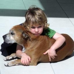 Rodzice chcieli, żeby ich synek został przy uśpieniu psa. Dziecko wyniosło z teg