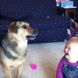 Kiedy pies to zrobił, dziecko nie mogło przestać się śmiać. Założę się, że i Ty