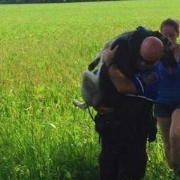 Przerażony pies ucieka z miejsca wypadku. Reakcja policjanta jest bezcenna!