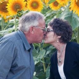 Pewien rolnik zasiał słoneczniki po śmierci żony. Gdy zobaczysz po co to zrobił,